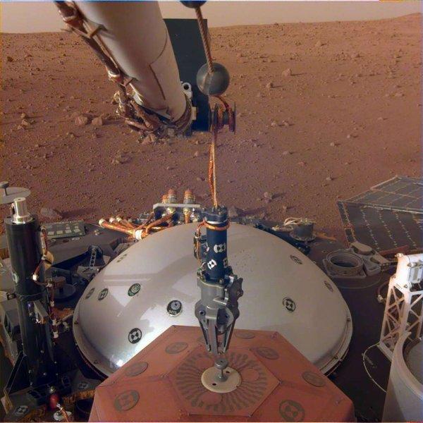 L'IMAGE & L'INFO ASTRO DU JOUR EN DIRECT DE MARS : La NASA a donné son feu vert au déploiement sur le sol du sismomètre SEIS et du capteur de flux thermique HP3. Pour fonctionner, ces deux instruments qui sont aussi le c½ur de la mission doivent être installés sur le sol. Pour les poser, le lander InSight utilisera un bras robotique. Ce sera la première fois dans l'histoire de l'exploration planétaire qu'une telle man½uvre robotique est réalisée. Le bras robotique d'InSight, avec son grappin, s'apprête à saisir le sismomètre français SEIS pour le poser sur le sol. (Sources NASA-JPL-CALTECH, ESA, CNES)