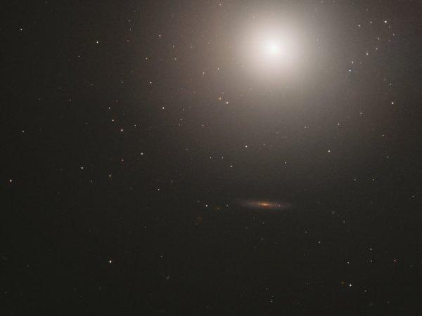 L'IMAGE & L'INFO ASTRO DU JOUR : UNE GALAXIE SPHÉRIQUE ET POURTANT ELLIPTIQUE ! Cette énorme boule d'environ 100 milliards d'étoiles est une galaxie elliptique située à environ 55 millions d'années-lumière de nous. Connu sous le nom de Messier 89, cette galaxie apparaît parfaitement sphérique. C'est inhabituel pour les galaxies elliptiques, qui ont tendance à être des ellipsoïdes allongés. La nature apparemment sphérique de Messier 89 pourrait toutefois être une astuce de la perspective et être causée par son orientation par rapport à la Terre. Messier 89 est légèrement plus petit que la Voie Lactée, mais présente quelques caractéristiques intéressantes qui s'étendent loin dans l'espace environnant. Une structure de gaz et de poussières s'étend jusqu'à 150.000 années-lumière du centre de la galaxie, connue pour abriter un trou noir supermassif. Des jets de particules chauffées atteignent 100.000 années-lumière de la galaxie, ce qui suggère que Messier 89 aurait déjà été beaucoup plus actif qu'il ne l'est actuellement. Il est également entouré d'un vaste système de panaches, qui peut avoir été provoqué par des fusions passées avec de plus petites galaxies, et implique que Messier 89, tel que nous le connaissons, pourrait s'être formé dans un passé relativement récent. (Sources NASA-HUBBLE-ESA)