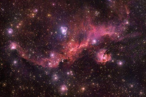 L'IMAGE & L'INFO ASTRO DU JOUR : ANATOMIE D'UNE MOUETTE COSMIQUE EN VOL ! Colorée et vaporeuse, cette collection d'objets fascinants est connue sous le nom de nébuleuse de la Mouette, nommée pour sa ressemblance à une mouette volante. Composée de poussière, d'hydrogène, d'hélium et de traces d'éléments plus lourds, cette région est le berceau chaud et énergétique de nouvelles étoiles. Les détails remarquables capturés ici par le télescope du VLT de l'ESO au sommet du Paranal (Chili), révèlent les objets astronomiques individuels qui composent l'oiseau céleste, ainsi que les éléments plus fins qui s'y trouvent. (Source ESO France)