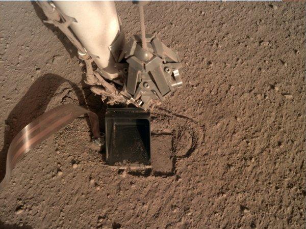 L'IMAGE & L'INFO ASTRO DU JOUR EN DIRECT DE MARS à 78 millions de kilomètres de la Terre ! La semaine dernière, le pénétrateur déployé sur le sol martien par la sonde américaine INSIGHT s'est enfin enfoncé un peu plus sous terre à 2cm. Il était bloqué à 30cm de profondeur depuis février 2019. Les ingénieurs du JPL et de l'agence spatiale allemande ont peut-être trouvé le moyen de sauver la mission du pénétrateur de la sonde INSIGHT, qui doit mesurer le flux de chaleur de Mars jusqu'à 5 m de profondeur et aider ainsi à comprendre l'histoire de son refroidissement. Il ne s'agit pas pour le moment d'appuyer sur le pénétrateur lui-même, mais de presser la pelleteuse contre lui pendant qu'il progresse. Pour s'enfoncer, la « taupe » – qui avance par percussions – a en effet besoin que le sol lui oppose une certaine force de friction. La question est évidemment de savoir si le pénétrateur pourra continuer à s'enfoncer lorsqu'il sera entièrement sous le sol et donc hors d'atteinte de la pelleteuse. A suivre ! (Sources NASA,JPL-CALTECH,ESA,CNES)