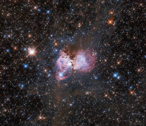 L'IMAGE & L'INFO ASTRO DU JOUR : UNE CRÈCHE STELLAIRE ! Alors que nous parlons de pandémie sur Terre, et que nous devons tous rester chez nous, en confinement, l'espace continue à être observé. Rêvons un peu... Cette image du télescope spatial HUBBLE montre une région appelée LHA 120-N150, elle se trouve près de la périphérie de la célèbre nébuleuse de la Tarentule. Cette dernière est la plus grande crèche stellaire connue de l'Univers local. La nébuleuse est située à plus de 160.000 années-lumière dans le Grand Nuage de Magellan, une galaxie irrégulière naine voisine qui orbite autour de la Voie lactée. Ce nuage de gaz et de poussière, ainsi que les nombreuses étoiles jeunes et massives qui l'entourent, est le laboratoire idéal pour étudier l'origine des étoiles massives. (Sources NASA-HUBBLE-ESA) Prenez soin de vous et de vos proches !