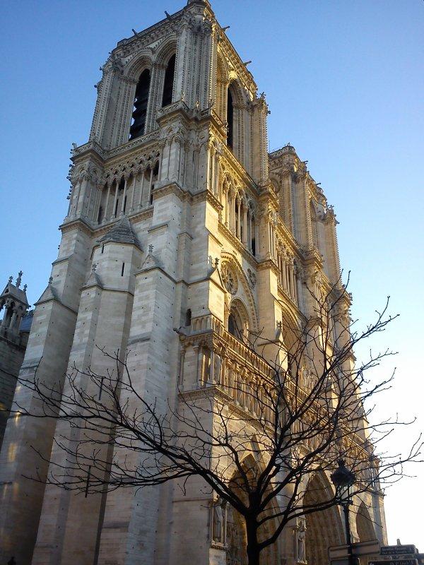 De l'Hôtel de Ville à Notre-Dame, il n'y a qu'un pas...