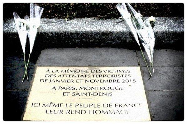 """""""C'est par la fraternité qu'on sauve la liberté"""" - Victor Hugo"""
