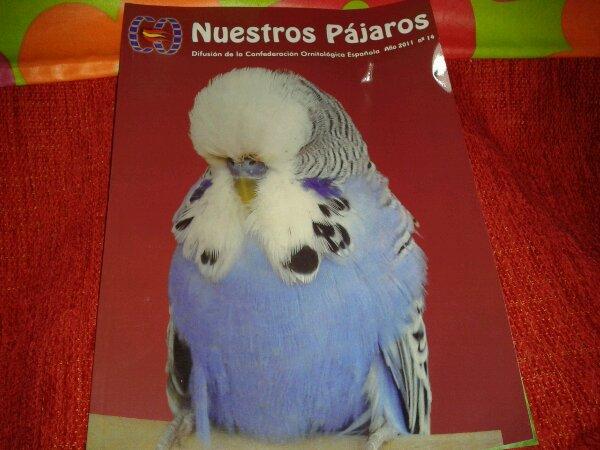 Portada n° 14 Nuestros pájaros.