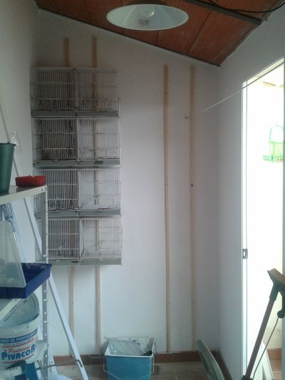 Reformando aviario noviembre 2011 (0)