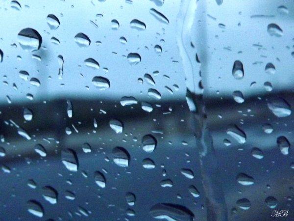 """Rain"" #213"