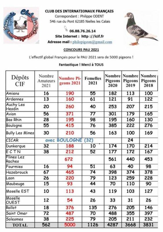 Pau : 5 000 pigeons, les chiffres explosent