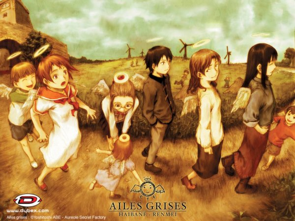 ailes grises ( haibane renmei )