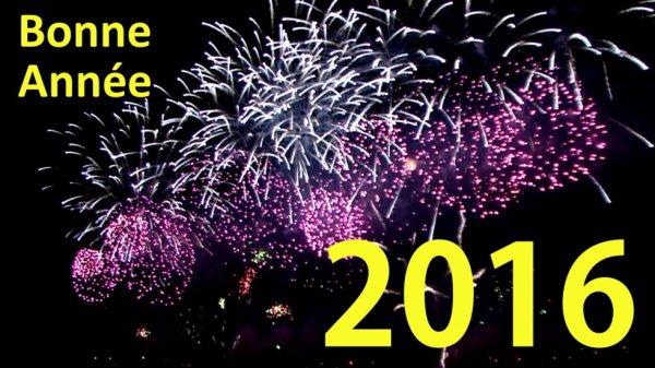 Bonne année 2016 et bonne santé ! :)
