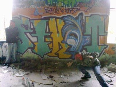 Pikot - Psico       DBK 2012