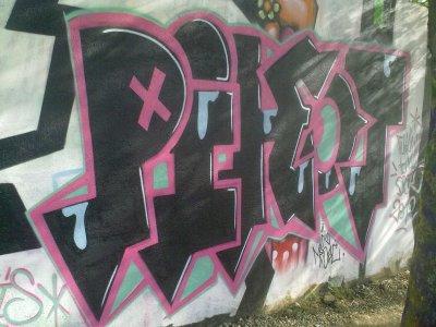 PiKoT   DBK-2012