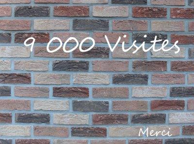 9000 visites