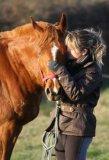 Photo de les-gros-poney-s