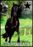 Photo de horsegirl21