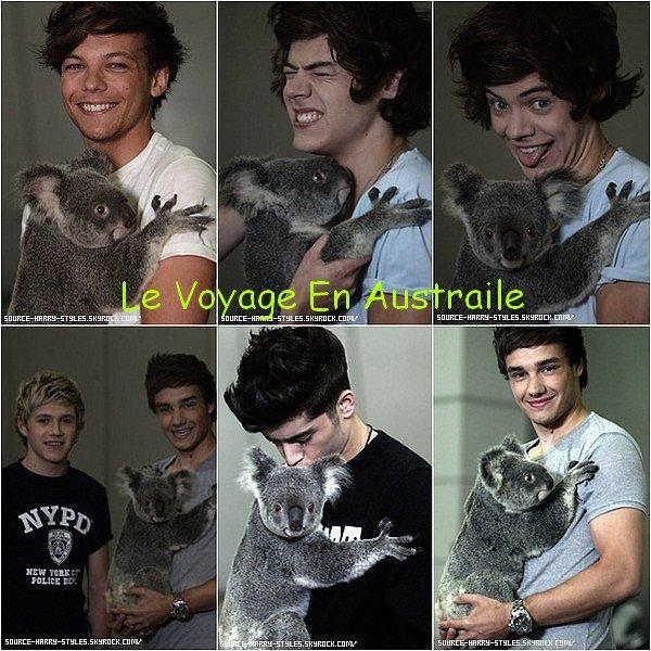 Chapitre 3 Le Voyage En Australie