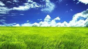 Sous le ciel bleu