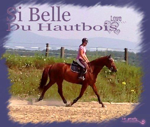 »Mlle Du Hautbois.