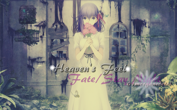 ₪ Fate/Stay Night₪