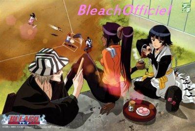 Liste des épisodes Bleach, Partie 1