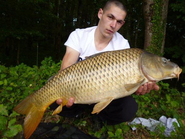 L'année passe , les fishs s'enchainent ...