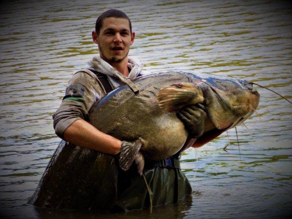 peu de fish , mais fish quand même