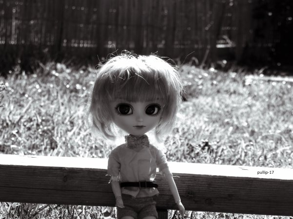 .............................. Séance photo de Joy ..............................
