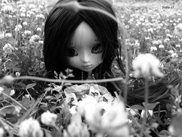 ................................... Séance photo de Kim ........................................