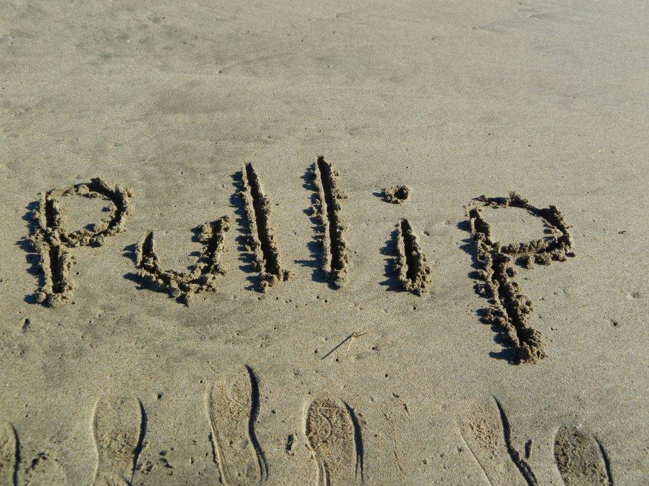 pullip-17