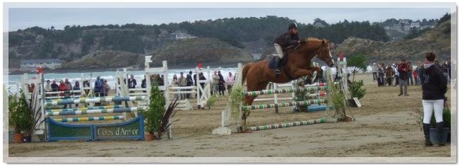 L'équitation & Moi