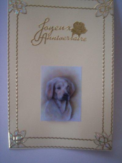 carte anniversaire chien n°1 (DISPONIBLE)