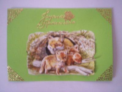 carte anniversaire renard n° 7 (DISPONIBLE)