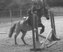 Photo de Love-Horse
