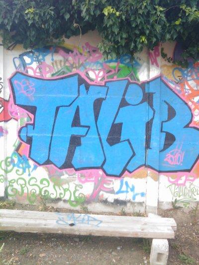 talib 2010