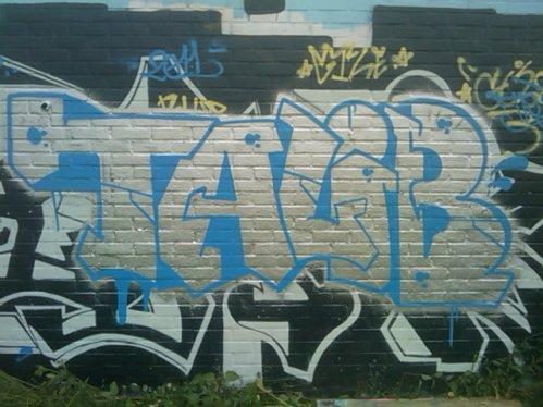 TALIB 11#