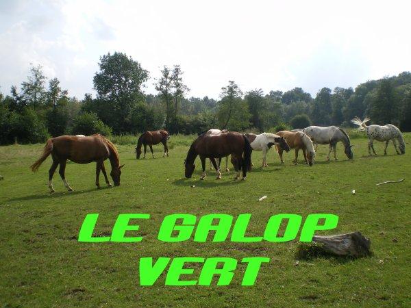 Le galop Vert!!