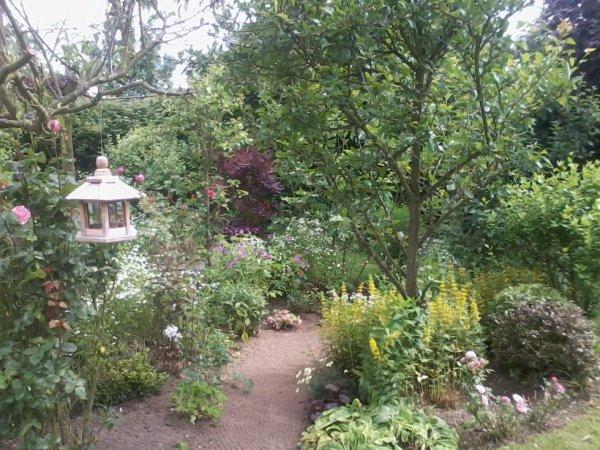 mn jardin