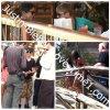 Selena accompagne Justin dans un parc d'attraction !