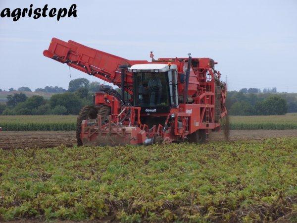 Arrachage de pommes de terres par Christophe Herens avec Cerfontaine