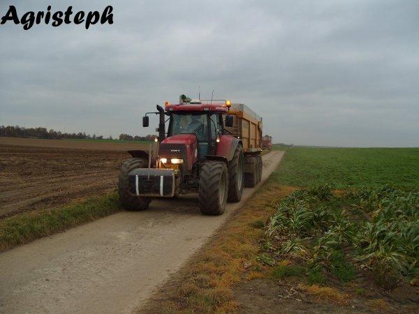 Arrachage de pommes de terres avec Isaply et Van Hoven