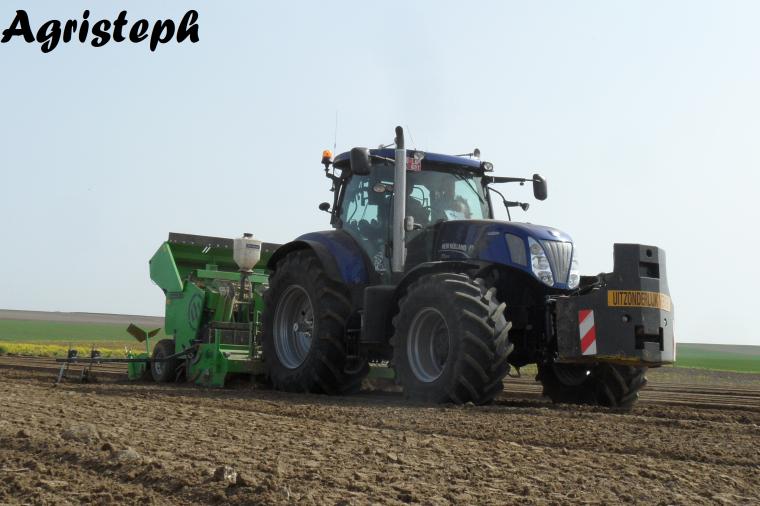 Plantation de pomme de terre 2014