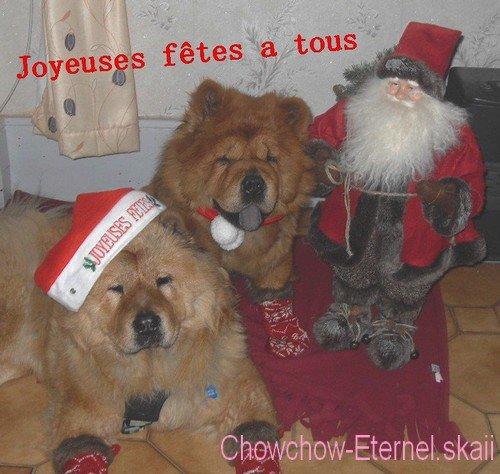 .. • |[ Chowchow-Eternel.skaii ]| •  ~>  Joyeuses Fêtes a tous  <~                   • |[ Chowchow-Eternel.skaii ]| • ..