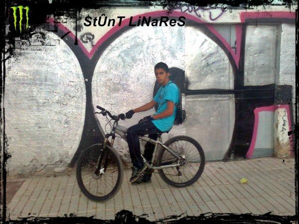 StUnT LiNaReS