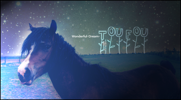 Wonderful-Dream