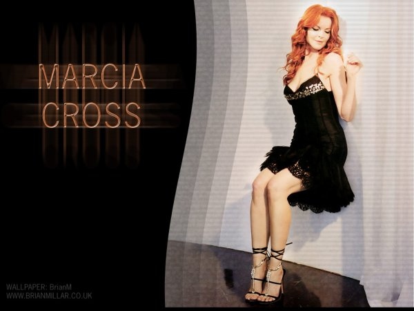 Marcia Cross alias Bree Van de Kamp