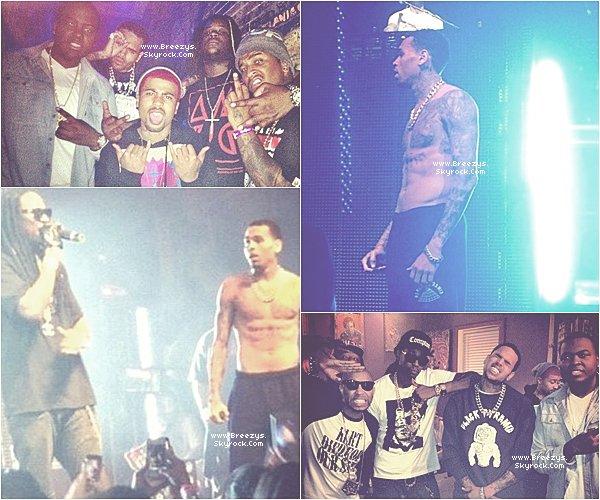 . Chris Brown Rejoint 2 Chainz Sur Scène Sur Le Morceau  » I'm Different  a Los Angeles. .