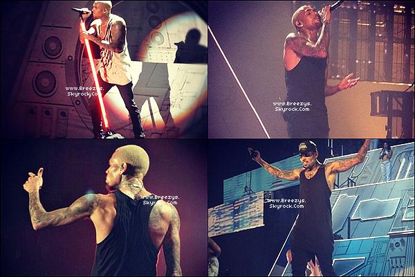 """. Chris B. a donné un Concert toujours dans le cadre de la tournée""""CarpeDiem Tour""""PARIS BERCY  2eme Show. ."""