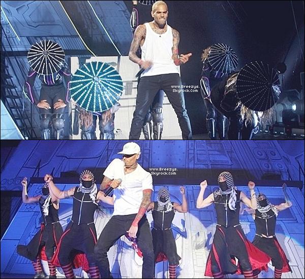 """. Chris B. a donné un Concert toujours dans le cadre de la tournée""""CarpeDiem Tour""""Cape Town [Afrique du Sud]2eme Show. ."""