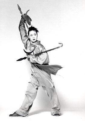 le kung fu tout simplement