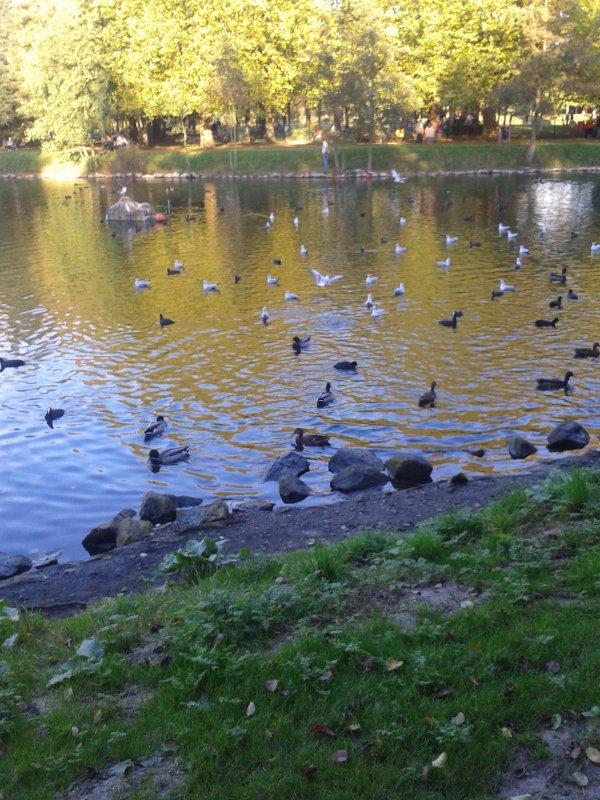 Très belle. journée ensoleillée pour un 18 octobre , 24 degré super agréable ! La nature est beaucoup plus belle que l'homme !