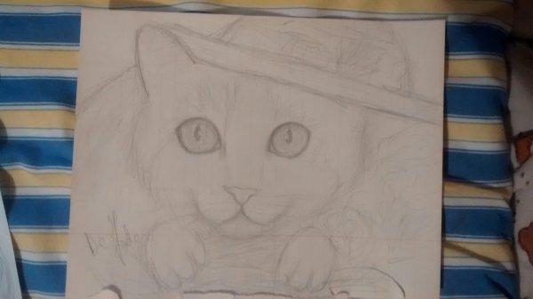 Mes dessins récent